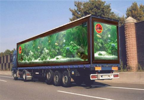 Aquarium Truck