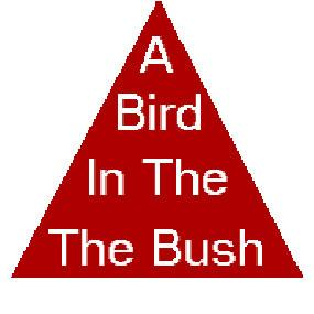 Bird in the bush triangle illusion
