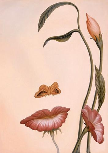 Flowers or face illusion