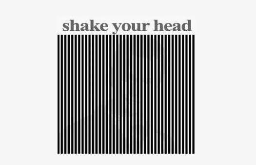 Shake your head illusion
