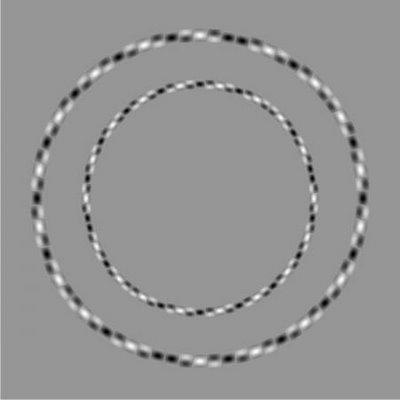 Striped Circles Illusion